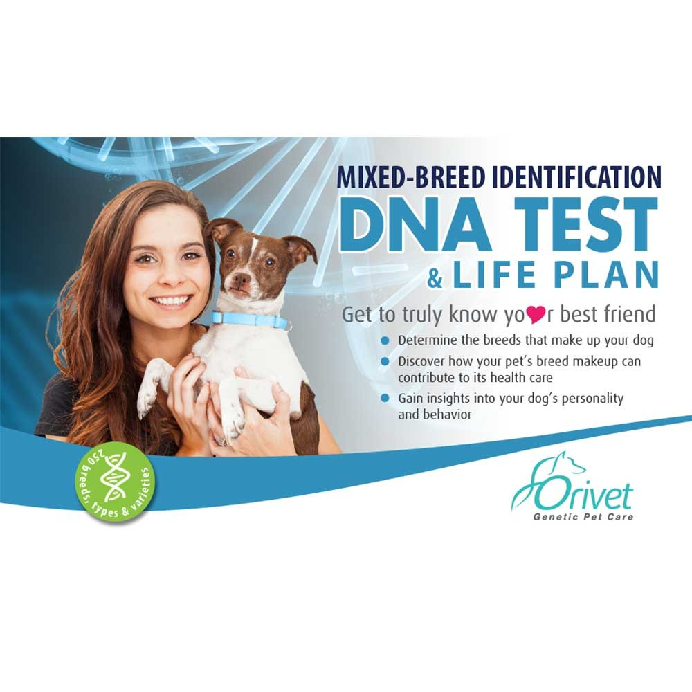 Mixed-Breed Dog Identification DNA Test and Life Plan™